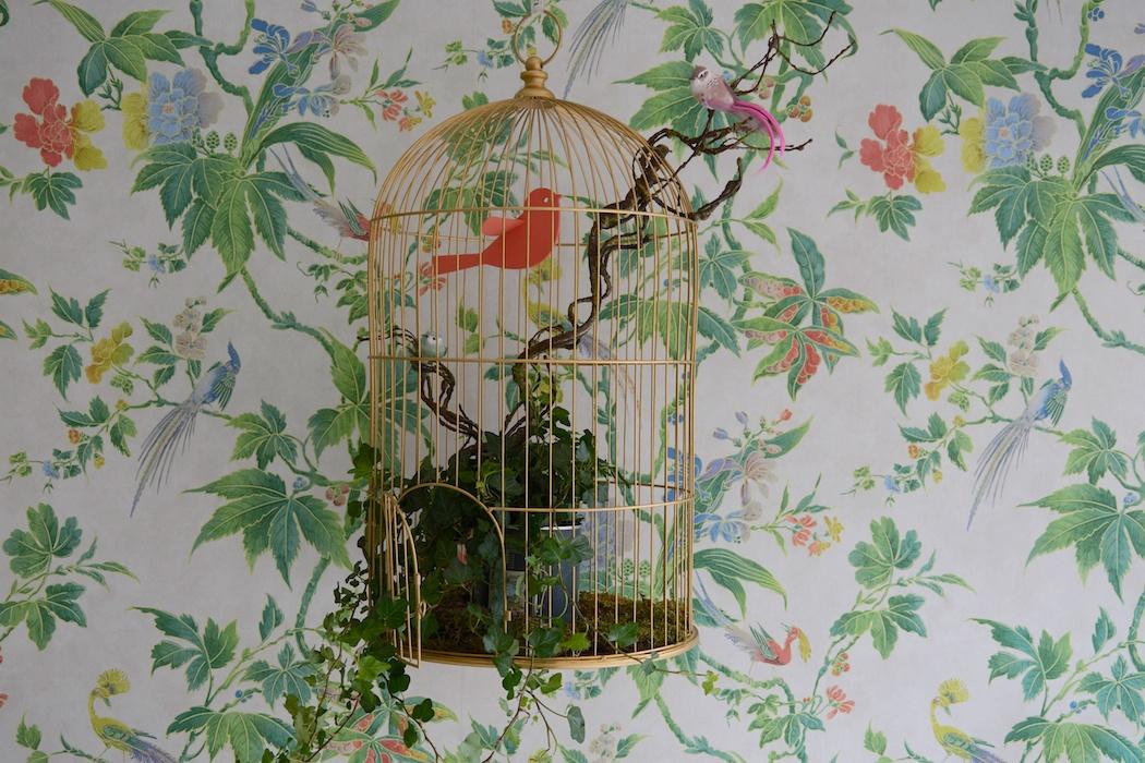 Blüten, Blätter & ihre Bewohner, Litlle Greene